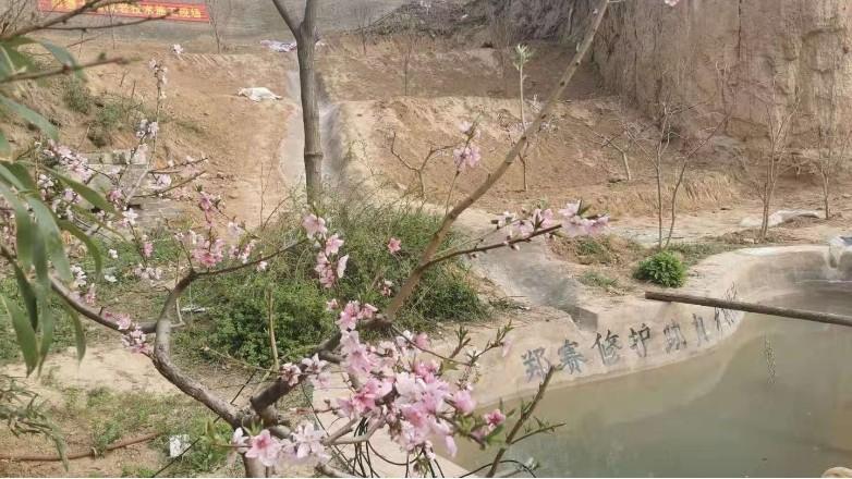 郑赛修护之土壤成岩技术介绍
