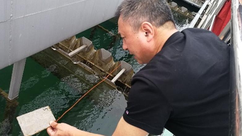 中赛管道告诉你,如何防止水池池壁长水藻?